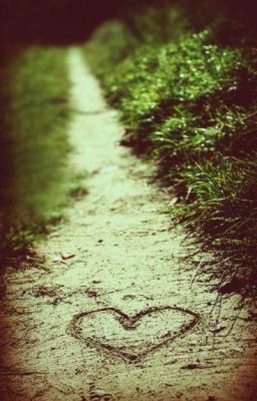 Love by ravendru