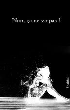Non, ça ne va pas ! by Shabhal