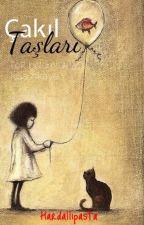 Çakıl Taşları -Tek Bölümlük Kısa Hikaye- by hardallipasta