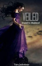 Veiled [Bk2] by Hijabi-Soldier