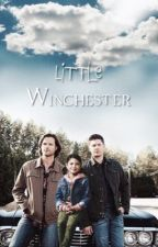 little winchester by fvckinwrite