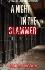 One Night in the Slammer by SmagTargetShaker