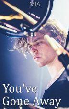 You've Gone Away • Ashton Irwin #Wattys2014 by lovesickriot