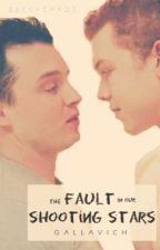 The Fault in Our Shooting Stars by BekkaChaos