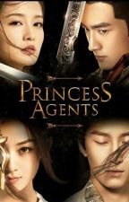 Princess Agents (The Legend of Chu Qiao: Division 11 Princess Agent) 1 by LazyMeimei