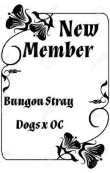 🅝🅔🅦 🅜🅔🅜🅑🅔🅡   Bungou Stray Dogs X Oc - ℙ𝕣𝕠𝕥𝕖𝕔𝕔