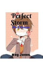 Perfect Storm//Mc X Reader by therealvineleaf