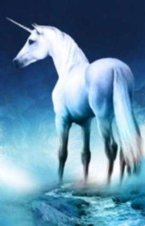 the secret unicorn  by Jillveulen