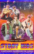 Stray Kids Imagines by classic_wildflower