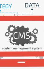 CMS Web Development by 21twelve