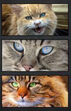 Les 3 yeux du destin .... by TopazeBleue