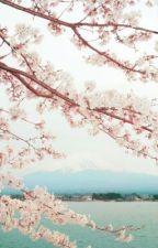 La leyenda de Sakura by danielaospinoc