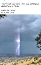 0702246035-đơn vị FWĐ làm thủ tục hải quan xuất, nhập, vận chuyển hàng hóa by phuonggs695