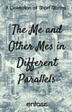 The Me and Other Mes in Different Parallels by Entasis
