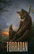 Torradan, aneb čtěte, pokud chcete pochopit má budoucí díla by blackwolftherian