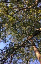 Under the tree by minyoongiisrude