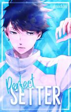PERFECT SETTER ;; graphics shop by GRANDKlNG