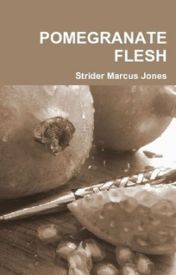 40 Poems From POMEGRANATE FLESH by Strider Marcus Jones by stridermarcusjones