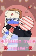 🌸Blossom tree🌸/Countryhumans/ ❤️RusAme❤️ by spotted1234