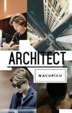 Architect by macupicu