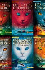Los Gatos Guerreros by danielabarreramora18