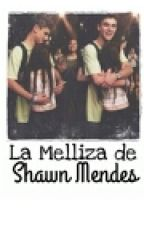 La melliza de Shawn Mendes .Jack G & tu by StefanyMEOW