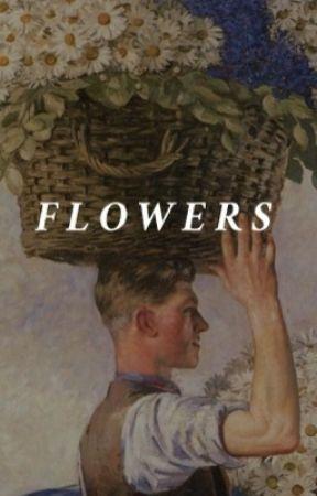 Flowers by elizabeththelost