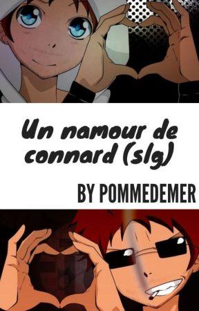 Un namour de connard (fanfic slg) by PommeDeMer