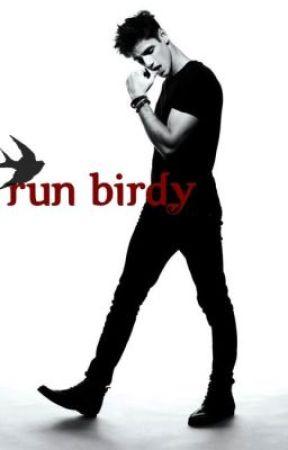 Run Birdy, Run by VioletNash