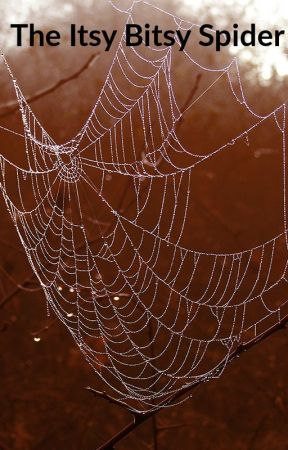 The Itsy Bitsy Spider by FantandNerdy30