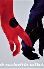 Jak rozkwitła miłość [Ladynoir] by Star-Zero-Two-002