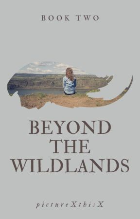Beyond the Wildlands (Book Two: The Wildlands Series) by pictureXthisX