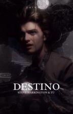 Destino||Steven Harrington Y Tú|| by Dainw111