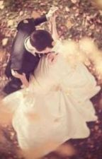 The Doctor's Wedding by amore_