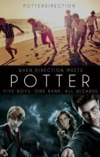 When Direction Meets Potter by PotterDirection