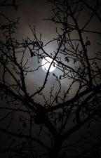 De Maanwachters by gele_powerranger