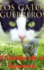 El Camino de un Guerrero. Los Gatos Guerreros. by azotelover