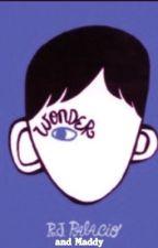 'Wonder' in Olivia's view by footymoo