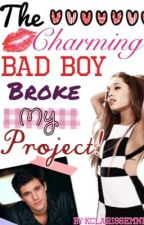 The Charming Bad Boy Broke My Project! by kclarissemnn