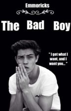 The Bad Boy (rewriting) by princess_emmo