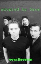 Adopted By 5SOS by hayleywillixms