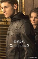 Batcat One-Shots 2  by BruceXSelina8