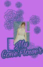My ConeFlower (J.jk & K.yr)  by K_JeulGi
