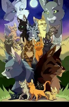 Characters as Warrior cats by FaronTerry