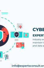 Industry Experts Marketing Insights  of CyberSecurity with Expertsconsult by expertsconsults