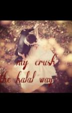 My crush .... the halal way? by sara-Bam