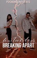 Fourteen Days: Breaking apart by PsychoImaginator1813