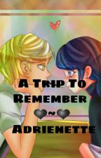 A Trip To Remember - Adrinette - Miraculous ladybug by xMarichat4lifex