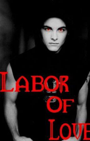 Labor Of Love (boyxboy) by SeizeTheButt