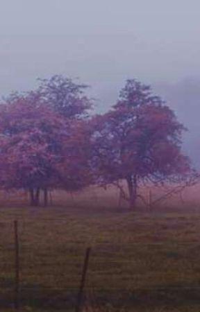 pink ;; Kyman by Transy_